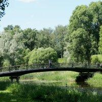 Пейзаж с  Мариентальским прудом :: Елена Павлова (Смолова)