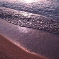 Берег моря :: Swetlana V