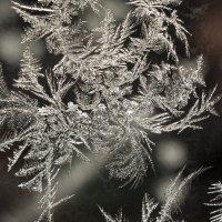 Естественный узор! :: Павел Савенко