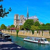 Париж. Вид на Нотр Дам :: vadimka
