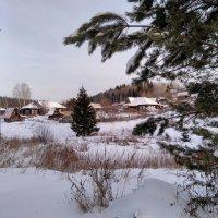 Деревня в глубинке :: Валерий Чепкасов