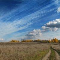 Деревенский пейзаж :: Oleg S