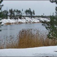 Река Россонь :: Светлана