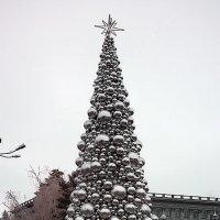 Где работает Дед Мороз? :: Alexander Varykhanov