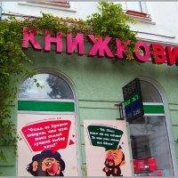 Книжный супермаркет на Дерибасовской. :: Любовь К.