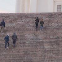 Парное взятие лестницы :: Андрей Синявин