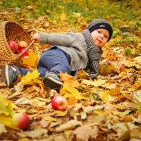 Осенние яблочки :: Нелли Сафина