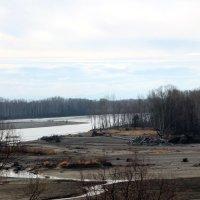 Река Катунь близко к устью. :: Олег Афанасьевич Сергеев