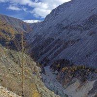 Ущелье реки Чёрный Иркут :: Анатолий Иргл