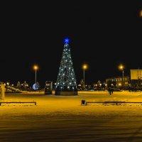 Новогодняя елка :: Владимир Волосовский