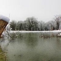зима :: Евгений Ромащенко