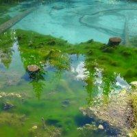 Гейзерово озеро.... :: Стил Франс