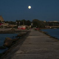 На берегу в Таллине :: leo yagonen