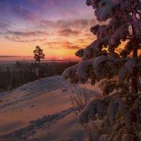 Тропинка к солнцу :: vladimir Bormotov