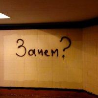 Зачем? :: Дмитрий Чистяков
