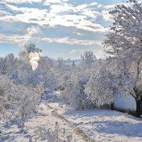 Был зимний день... :: Петр Заровнев