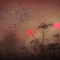 Два солнца...( осеннее, тревожное..) :: Удивительное Рядом