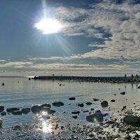 Лучи осеннего солнца :: Сергей