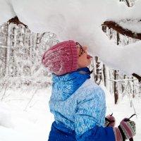 Главное зимой - не есть желтый снег!:) :: Андрей Заломленков
