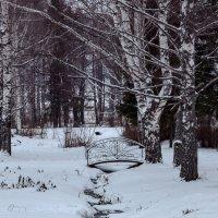 Декабрьская картинка :: Валерий Симонов