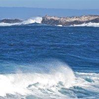 Тихий океан :: НАТАЛЬЯ