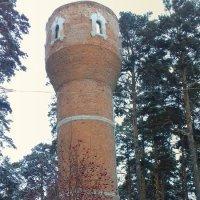 Старая башня . :: Мила Бовкун