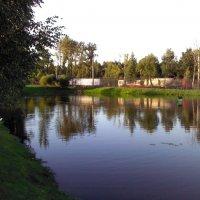 Любимое место отдыха :: Svetlana Lyaxovich