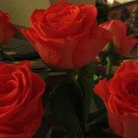 Цветы :: Борис Хантер