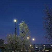 Прелесть полярной ночи :: Ольга