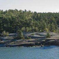 Берег близ Хельсинки :: leo yagonen