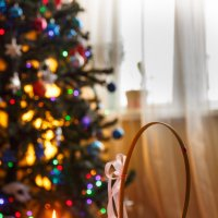 Новый Год по-домашнему :: Роман Царев