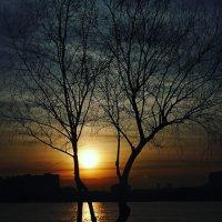 Река Кубань :: Максим Трофименко