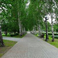 Аллеи и парки города :: Милешкин Владимир Алексеевич