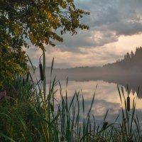 Туман над озером :: Любовь
