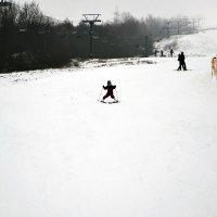 Зимние забавы :: Aleks Ben Israel