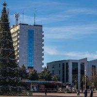 Новогодняя елка :: Игорь Сикорский