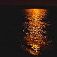 Луна, луна.... :: Александр Грищенко