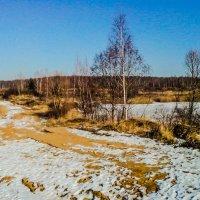 Зарастающий карьер создаёт разнообразие в монотонном мире равнинных пейзажей. :: Александр Куканов (Лотошинский)
