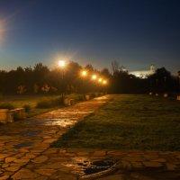 Ночь.Принарский парк. :: Владимир Гришин