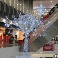А над деревом - звезда :: Дмитрий Никитин
