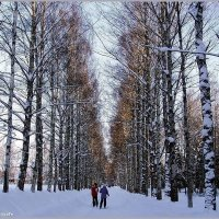 Лыжная прогулка :: vadim