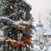 Новогодние украшения хмурого декабря :: Николай Белавин