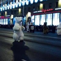 У нас по городу ходят белые медведи и не только белые :: G Nagaeva