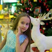 Новогодний портрет :: Albina