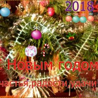 С новогодьем! :: Самохвалова Зинаида
