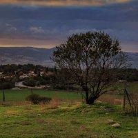 Первое утро Нового года в Израиле :: Владимир Сарычев