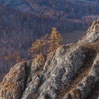 Осенняя :: Анатолий Соляненко