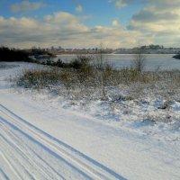 зимняя дорога к озеру :: Александр Прокудин