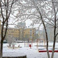 Господи, так снега захотелось… :: Elena Izotova