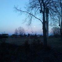 Pilnatis / Full-moon :: silvestras gaiziunas gaiziunas